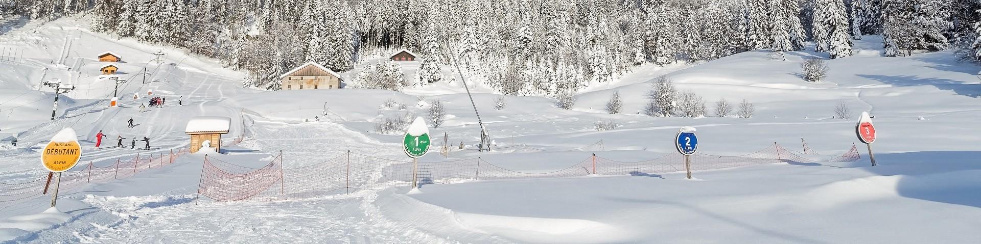 dominique-steinel-neige285-001-5-jpg-larcenaire-2130