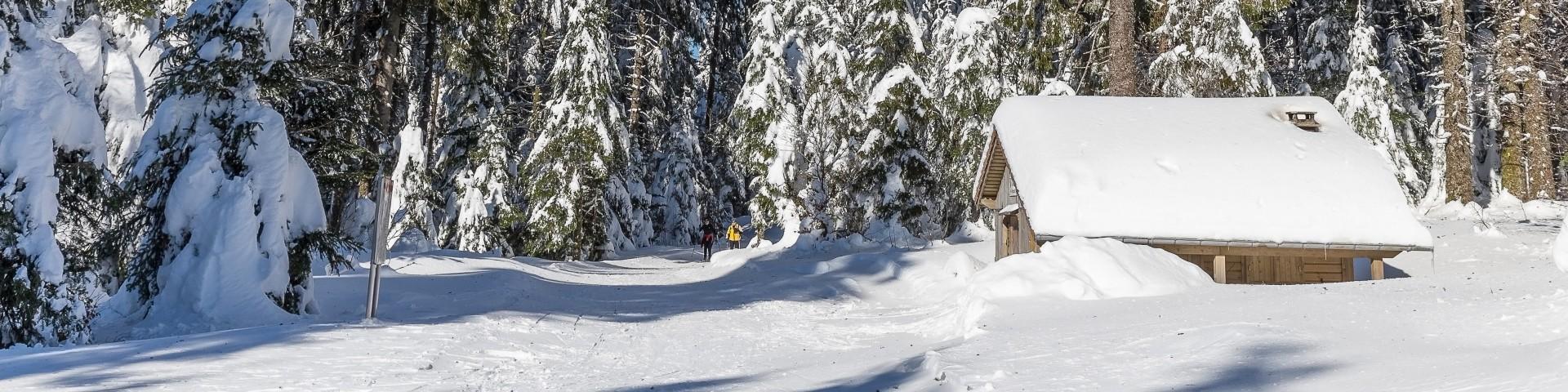 dominique-steinel-neige285-001-7-3874