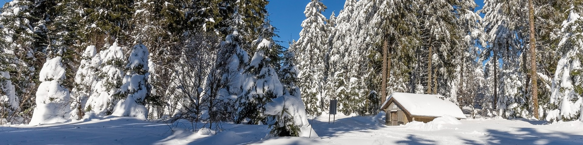 dominique-steinel-neige285-001-8-3876