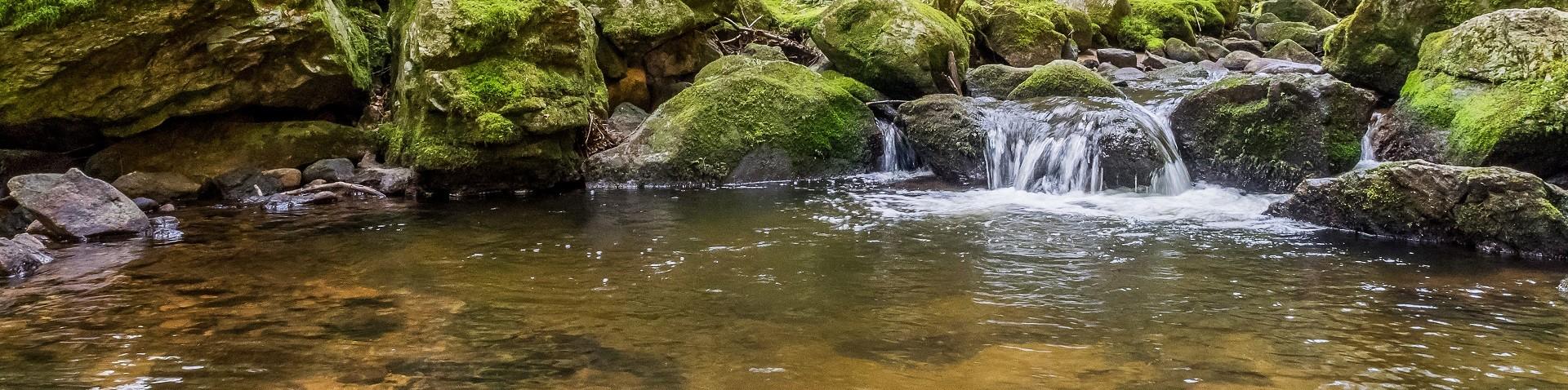 eau222-001-dominique-steinel-2664