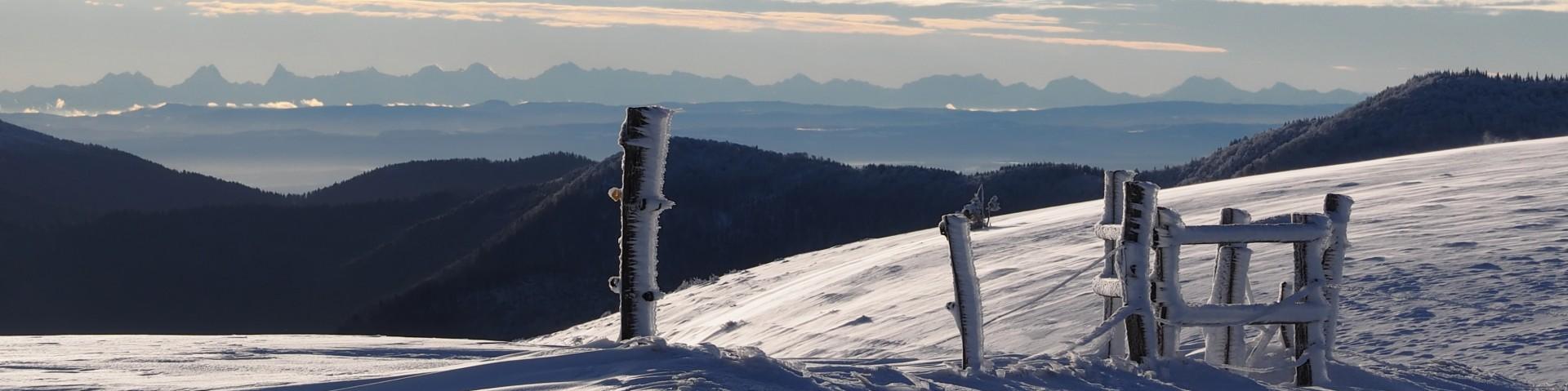 neige180-001-dominique-steinel-3875