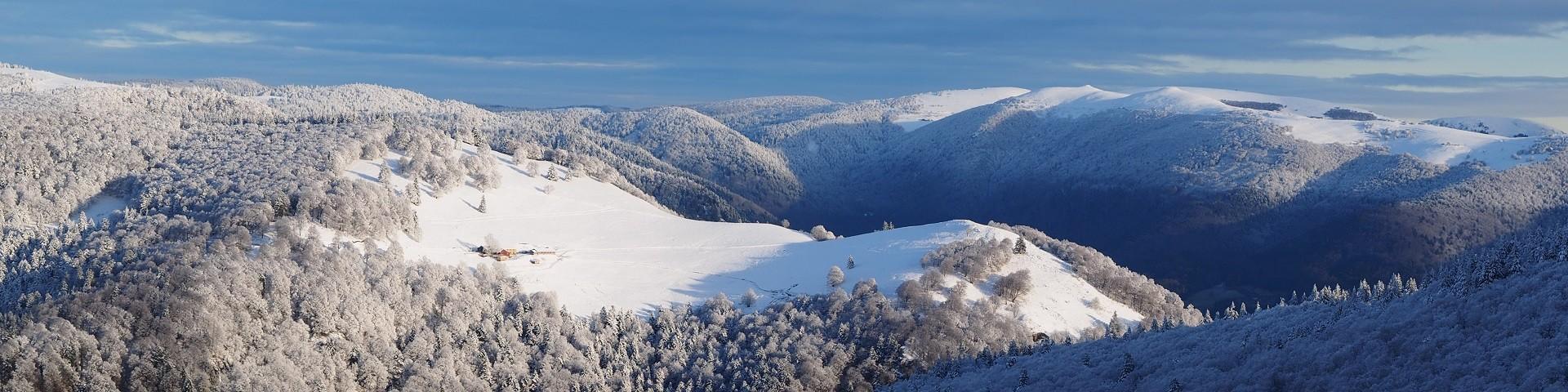 neige195-001-dominique-steinel-jpg-montagne-2132