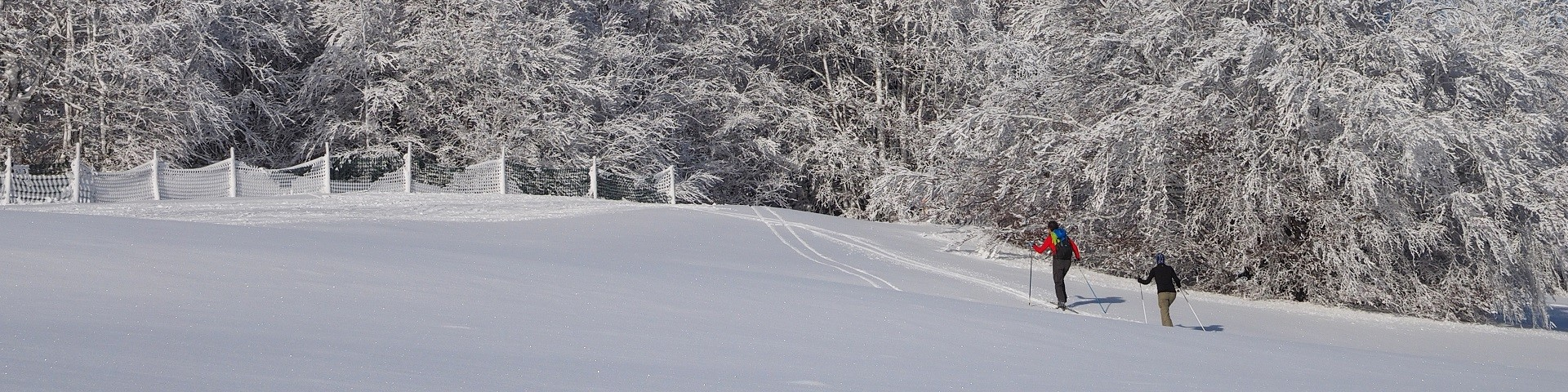 neige209-001-dominique-steinel-jpg-ski-de-fond-2133