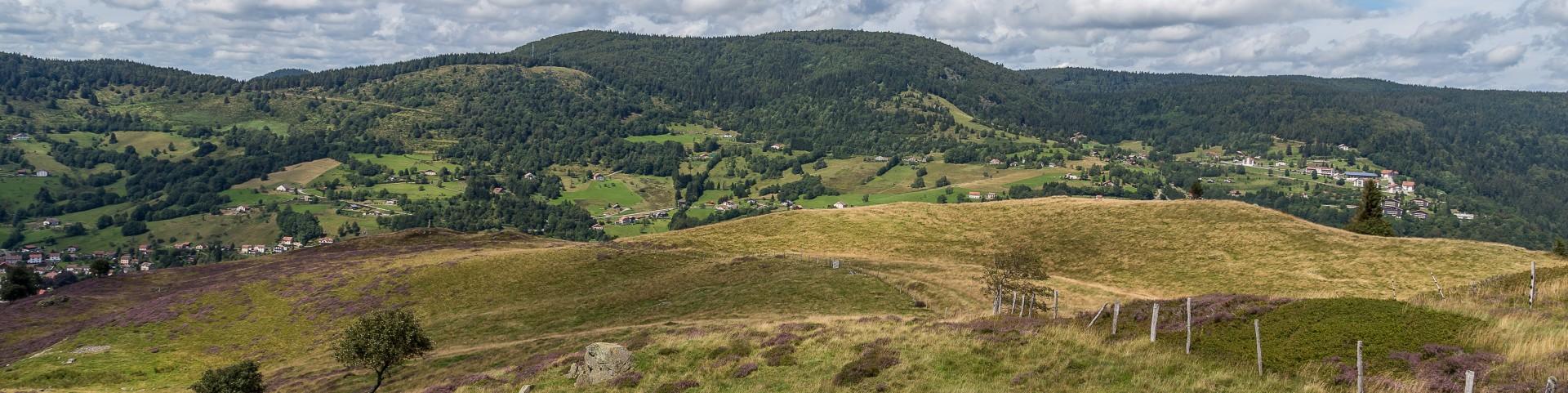 paysage855-001-dominique-steinel-3904