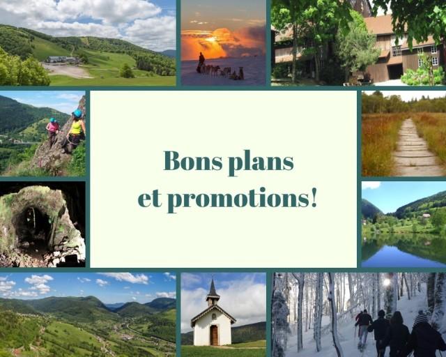 Bons plans & Promotions