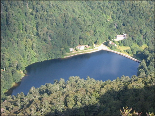 Lakes suitable to swim on the territory