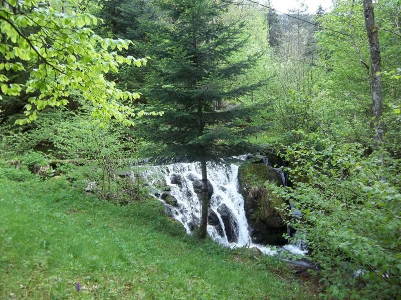 cascade-derriere-des-charbonniers-622