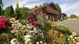 chalet-bussang-vosges-pied-pistes-10-189605