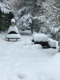 chalet-bussang-vosges-wifi-location-1-199336