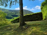 chalet-bussang-vosges-wifi-location-16-199350
