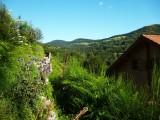 chalet-nature-vosges-location-montagne-4-131062