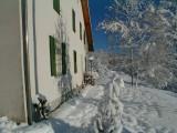 studio-appartement-location-vosges-le-thillot-9-184273
