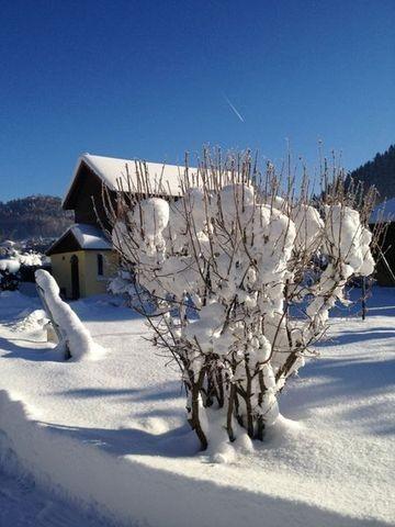 gite-chalet-maison-location-vacances-vosges-le-menil-8-131227-155425