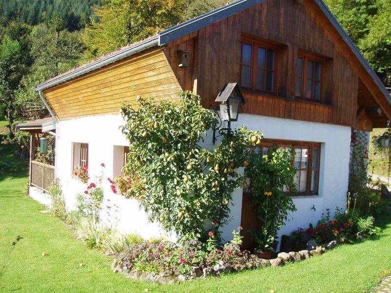 location-chalet-vosges-le-thillot-vacances-7-184210