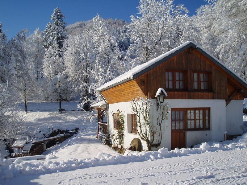 location-chalet-vosges-le-thillot-vacances-8-184209